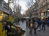 Las Ramblas in the Evening  Barcelona  Catalonia  Spain  Europe