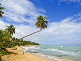 Tres Palmitas Beach  Puerto Rico  West Indies  Caribbean  Central America