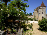 Old Well with Le Chateau De La Marthonie in the Background  St Jean De Cole  Dordogne
