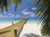 Jetty Leading Out to Tropical Sea  Maldives  Indian Ocean  Asia
