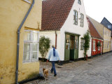 Woman Walking with a Dog in Ribe Historic Center  Ribe  Jutland  Denmark  Scandinavia  Europe