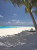 Hammock on Beach  Maldives  Indian Ocean  Asia