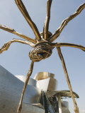 The Guggenheim  Designed by Architect Frank Gehry  and Giant Spider Sculpture by Louise Bourgeois