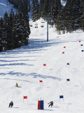 Giant Slalom Racers at Whistler Mountain Resort