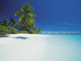 Island and Lagoon  Maldives  Indian Ocean  Asia