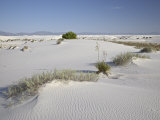 Sand Dunes  White Sands National Monument  New Mexico  United States of America  North America