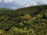 Mountain View Near St Marsal  Pyrenees Orientales  France  Europe