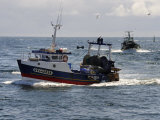 Fishing Boats Returning to Harbour  Guilvinec  Finistere  Brittany  France  Europe