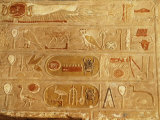 Cartouches of Thutmose III  1479-25 18th Dynasty New Kingdom Egyptian Pharaoh  and Hieroglyph
