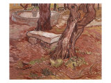 Stone Bench in the Garden of St Paul Hospital  Saint-Remy  1889