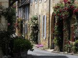 Flower Bedecked Street  St Cyprien  Dordogne  France  Europe