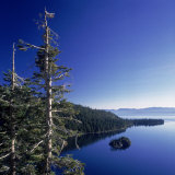Fannette Island in Emerald Bay with Sugar Pine  Emerald Bay State Park  Lake Tahoe  California