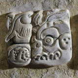 Mayan Glyphs  Stuccowork  Found inside Temple XVIII  Mexico
