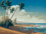 Kona Coast I