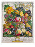 October  from 'Twelve Months of Fruits'  by Robert Furber