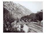 Mule Railway in North America  late 19th century