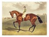Bay Middleton  winner of the Derby in 1836  after John Frederick Herring