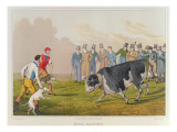 Bull Baiting'  pub by Thomas McLean  1820