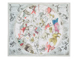 Celestial Planisphere Showing Zodiac Signs  from &#39;The Celestial Atlas  or The Harmony of Universe&#39;