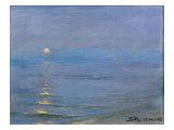 Summer Evening  Skagen  1908
