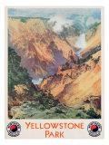 Yellowstone Park  1934