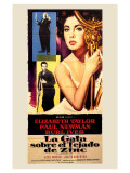 Cat On a Hot Tin Roof  Spanish Movie Poster  1958