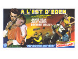 East of Eden  Belgian Movie Poster  1955