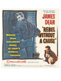 Rebel Without a Cause  1955