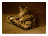 Recumbent Cat  1898