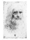 Portrait of a Bearded Man  Possibly a Self Portrait  c1513