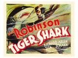 Tiger Shark  1932