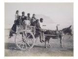 A Crowded Wagon Drawn by a Mule  Palermo  Sicily  c1880