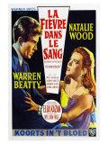 Splendor in the Grass  Belgian Movie Poster  1961