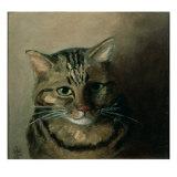 A Head Study of a Tabby Cat