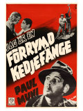 I Am a Fugitive From a Chain Gang  Swedish Movie Poster  1932