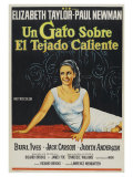 Cat On a Hot Tin Roof  Argentine Movie Poster  1958