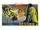 The Fly  Belgian Movie Poster  1958