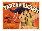 Tarzan Escapes  1936