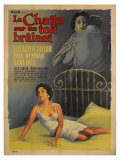 Cat On a Hot Tin Roof  French Movie Poster  1958