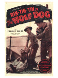 The Wolf Dog  1933