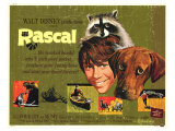 Rascal  1969