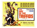 The Day of the Triffids  UK Movie Poster  1963