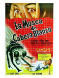 The Fly  Argentine Movie Poster  1958