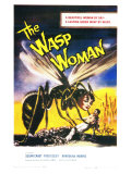 The Wasp Woman  1960