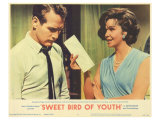 Sweet Bird of Youth  1962