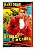 Rebel Without a Cause  Argentine Movie Poster  1955