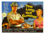The Long Hot Summer  UK Movie Poster  1958