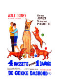 The Ugly Dachshund  Belgian Movie Poster  1966