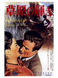 Splendor in the Grass  Japanese Movie Poster  1961
