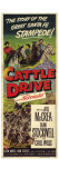 Cattle Drive  1951